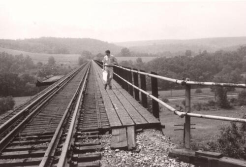John Oliver on Salisbury Viaduct 1970s (1)