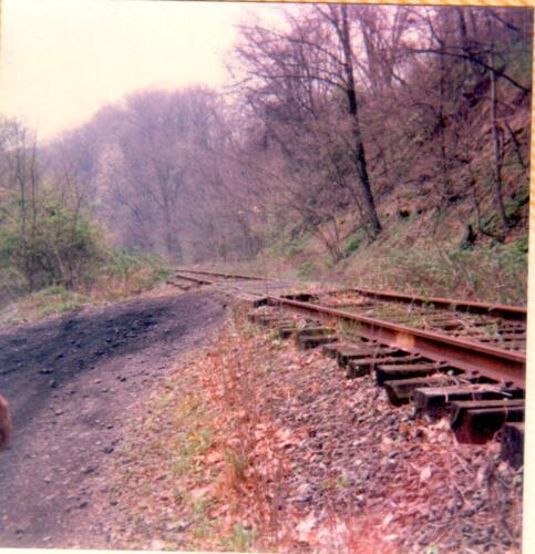 Regional Trail Corp.- Site Feasibility Assessment 1990 Vol 2