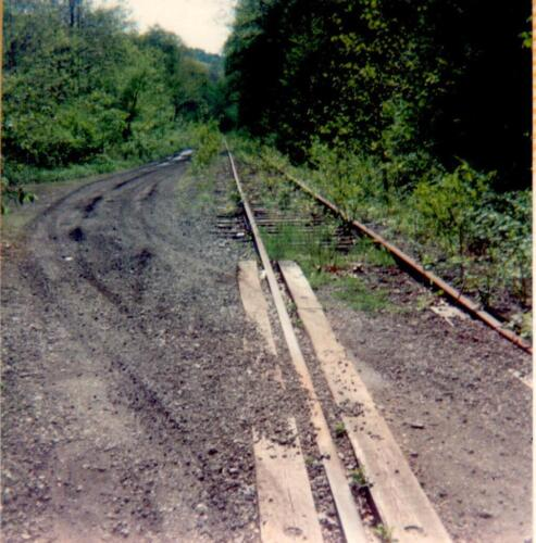 Regional Trail Corp.- Site Feasibility Assessment 1990 Vol 3